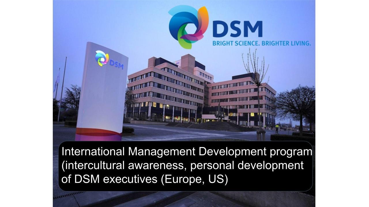 DSM international Management development program